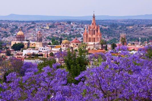 Best Restaurants In San Miguel De Allende